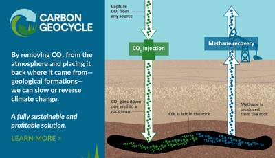 carbon geocycle