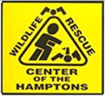 Wildlife Rescue Center of the Hamptons
