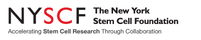 The New York Stem Cell Foundation